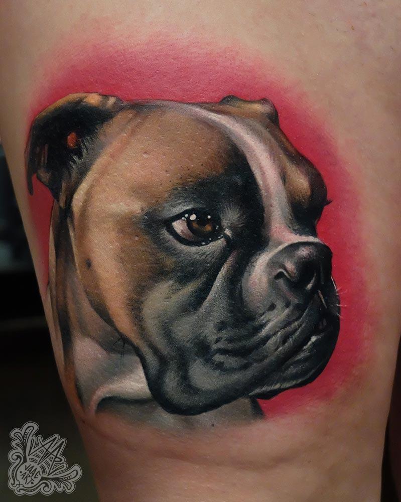 boxer-perro-portrait-colorportrait