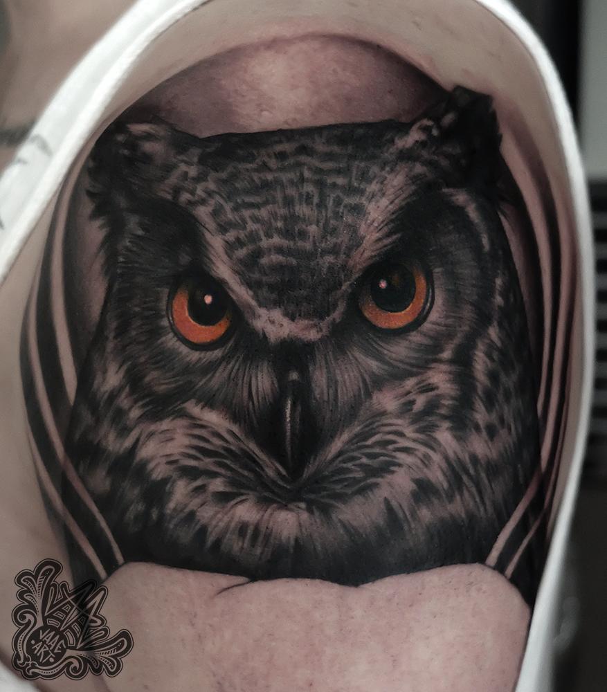 buho-owl