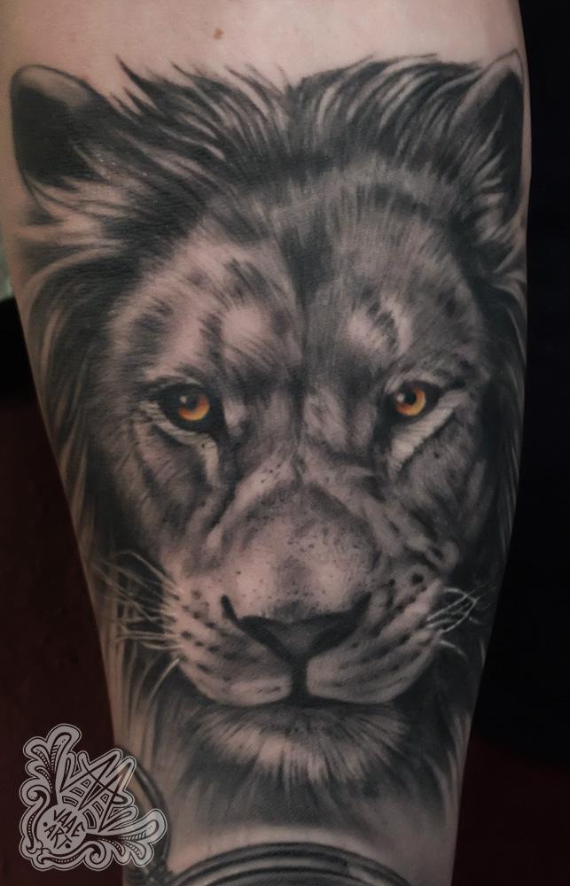 leon-lion-liontattoo-leontattoo-healedtattoo-blackandgreytattoos-realistictattoos-besttattooartists