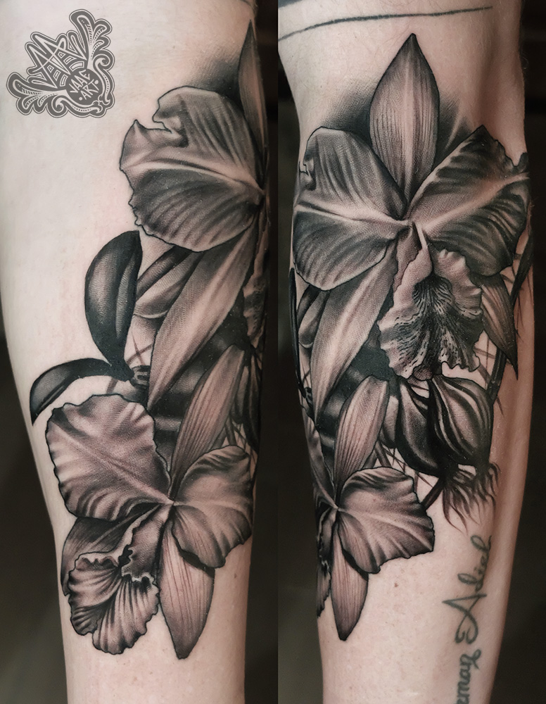 -orquidea-blackandgreytattoo-halfsleevetattoo-healedtattoos-tatuadorcanario-mejorestatuadorscanarios-tatuadortenerife-mejorestatuadorestenerife-tenerifetattoo-tatuadoresespañoles-mejorestatuadoresespañoles-tattoo-tattooink-cattleya