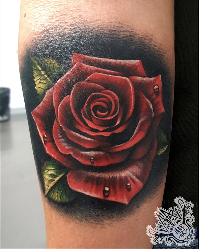 rose-realistic-red