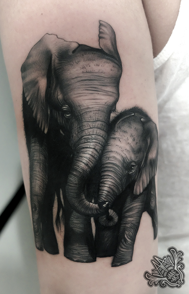 elephant-elefantes