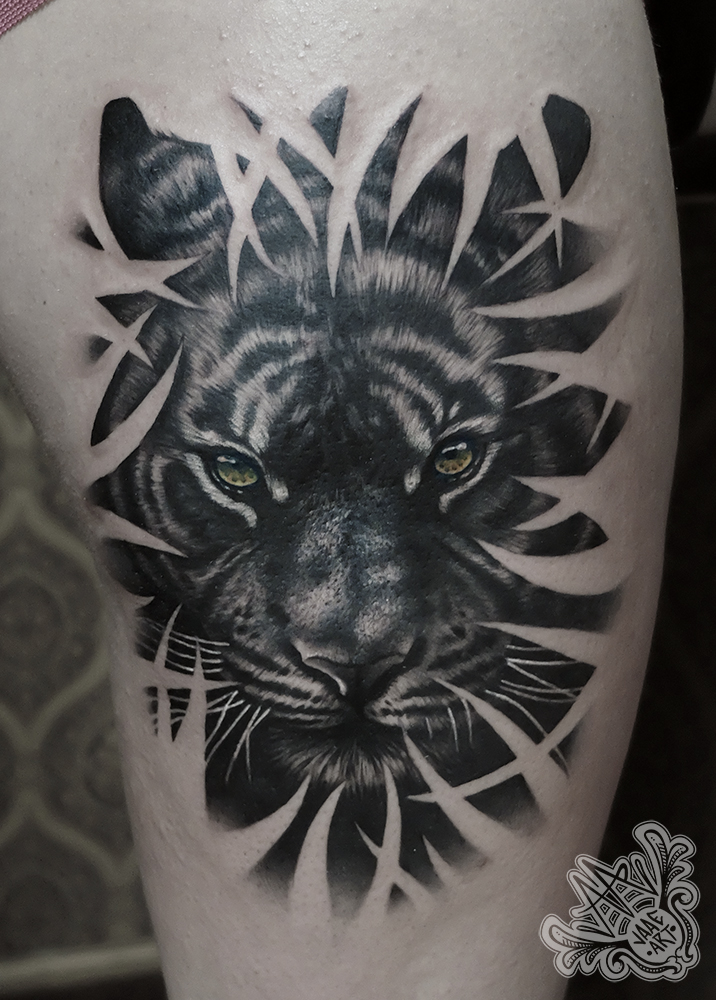 tigre-bambu-tiger