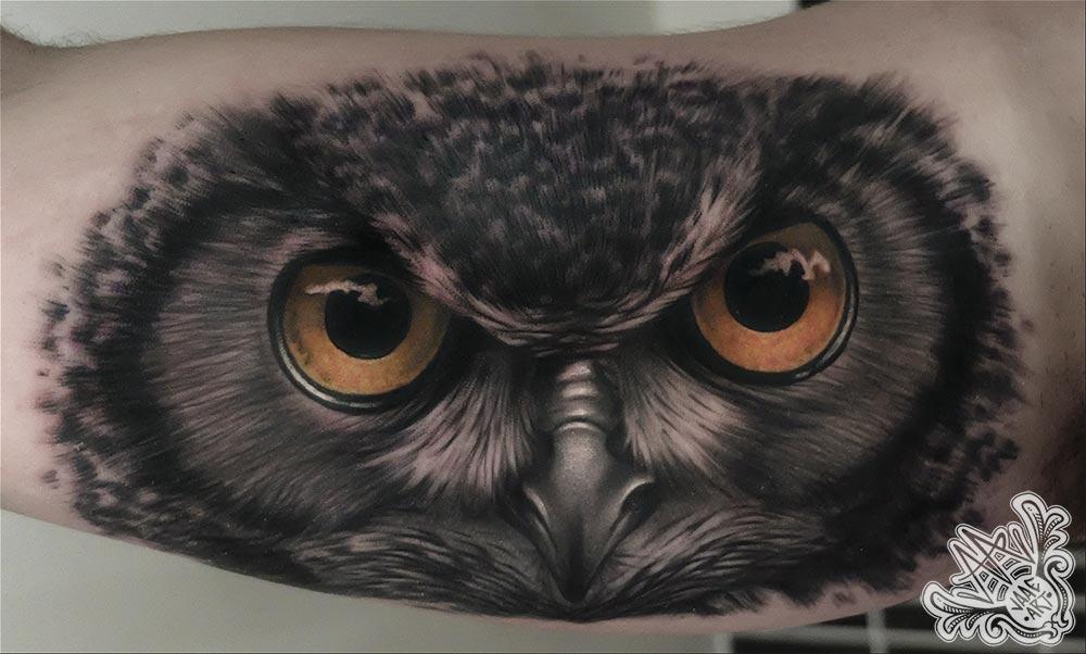 buho-owl-mirada-eyes