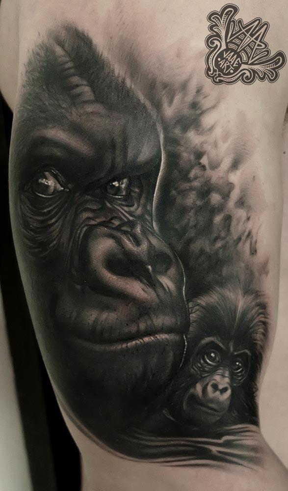 gorilas-madreehijo-gorilla-gorila