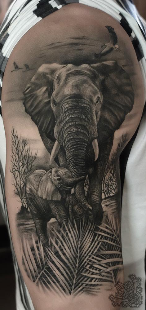 -elephantandson-elephant-elefante-elefanteycria-blackandgreytattoo-africatattoo-africa-healedtattoo-halfsleevetattoo-tenerifetattoo-mejortatuadortenerife-canariastattoo-tattoorealismotenerife